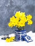 Daffodils Still Life Stock Image