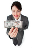 Charming businesswoman showing a bank note Stock Photography