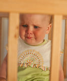Charming child in the crib Royalty Free Stock Image