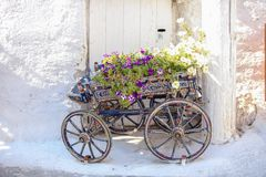 Charming Decorative cart with flowers at the Stock Photo
