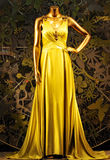 Charming dress with golden color Royalty Free Stock Photography