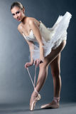 Charming female ballet dancer posing tying pointe Stock Image