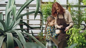 Charming female garderner and her little daughter are using tablet while working in greenhouse together. Modern