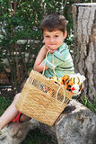 The charming four-year boy with a plush tiger cub. Royalty Free Stock Images