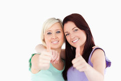 Charming friends posing Royalty Free Stock Image