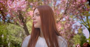 Charming ginger female student in white blouse watching dreamily into camera in pink floral garden. Charming ginger female student in white blouse watching stock video footage