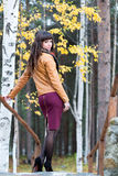 Charming girl in the autumn forest. Royalty Free Stock Images