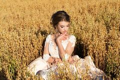 Charming girl in a dress sitting in rye stock photography