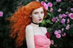 Charming girl with red hair Stock Photography
