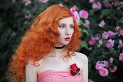 Charming girl with red hair Royalty Free Stock Image