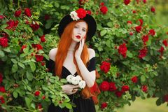 Charming girl with red hair Royalty Free Stock Photography