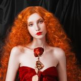 Charming girl with red hair royalty free stock images