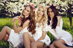 Charming girls in elegant dresses and flower's headband Royalty Free Stock Photography