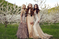 Charming girls in luxurious sequin dresses posing in blossom garden Royalty Free Stock Images