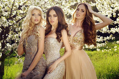 Charming girls in luxurious sequin dresses posing in blossom garden. Fashion outdoor photo of beautiful charming girls in luxurious sequin dresses posing in stock image
