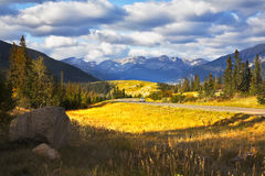 Charming glade with a yellow autumn grass and road Stock Photo