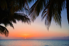Charming gorgeous beautiful view of warm inviting sunset time at Cuban Cayo Coco island Stock Images