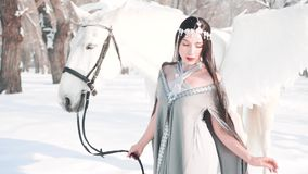 Charming gorgeous dark princess in a fabulous winter forest with white pegasus, a brave model poses for the camera in. The cold, a new snow queen with jewels on stock video