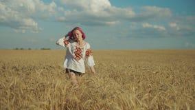 Charming woman enjoying walk in wheat field at sunset. Charming joyful young woman in embroidered clothes enjoying a walk in golden wheat field, with hands stock video