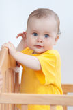 Charming kid in the crib Stock Photography