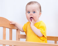 Charming kid in the crib Stock Images