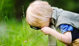 Charming kid exploring nature with magnifying glass stock images