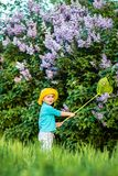 A charming kid playing with a scoop on a meadow in a warm and sunny summer or spring day. Active rest for children. A boy boy is fun with pleasure for stock photography