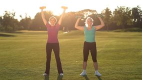 Charming ladies working out with dumbbells in park stock footage