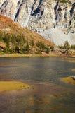 Charming lake Ellery in Yosemite. Royalty Free Stock Photo