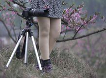 Charming legs and camera Stock Photos