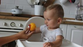 Charming little baby boy eating first food peach at kitchen. Mom feeds child. Charming little baby boy eating first food peach at the kitchen. Mom feeds child stock footage