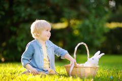 Charming little boy hunting for easter egg in spring park on Easter day Stock Photography