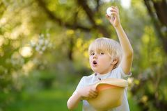 Charming little boy hunting for easter egg in spring park on Easter day. Traditional easter festival outdoors royalty free stock photography