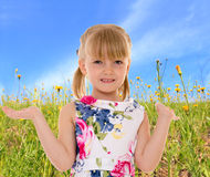 Charming little girl on the background of meadows Royalty Free Stock Photos