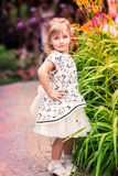 Charming little girl in a beautiful dress outdoor Stock Photography