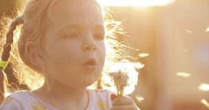 Charming little girl blowing dandelion while walking. Front view of charming little girl in white dress blowing dandelion while walking in park. Funny child stock video