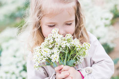 Charming little girl with a bouquet Stock Photos