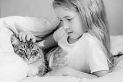 Charming little girl hugging her cat lying royalty free stock image