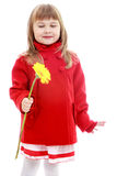 Charming little girl in a red coat Stock Images