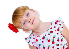 Charming little girl with red rose in hair braided. Half-length portrait. isolated on white background Stock Photo
