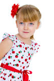 Charming little girl with red rose in hair braided. Half-length portrait. isolated on white background Stock Images