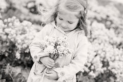Charming little girl smelling a bouquet Royalty Free Stock Photography