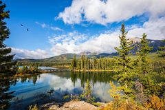 Charming little island in the Pyramid Lake Royalty Free Stock Photo
