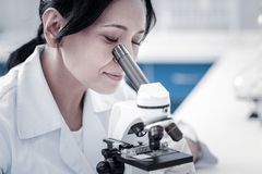 Charming mature lady examining sample under microscope stock photo