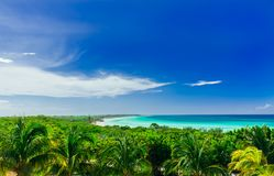 Charming mesmerizing  view on tropical palm trees garden with tranquil turquoise inviting ocean and beach against blue sky backgro Stock Photos