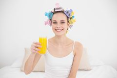 Charming natural brown haired woman in hair curlers holding a glass of orange juice Stock Photo