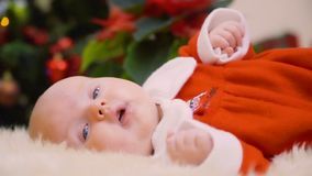 Charming newborn girl falls asleep at Christmas tree background stock video