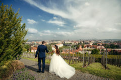 Charming newlyweds are holding hands while walking along the paving road near Prague panorama. Back view. Charming newlyweds are holding hands while walking Royalty Free Stock Photo