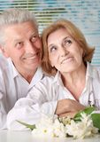 Charming old couple at the resort Stock Images