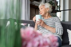 Charming old woman relaxing on couch with hot drink Royalty Free Stock Image